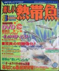 [メール便送料無料!!][半額処分!]楽しい熱帯魚【2009年8月号】癒しの水中世界DVD付き!